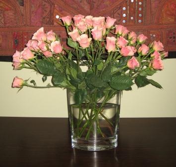 Marcia's Roses