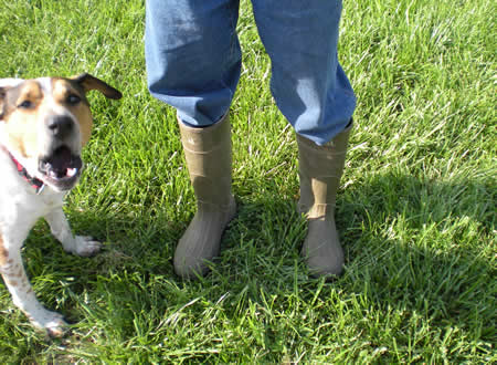 Rubber boots.  Buster seems to have something to say about it too.