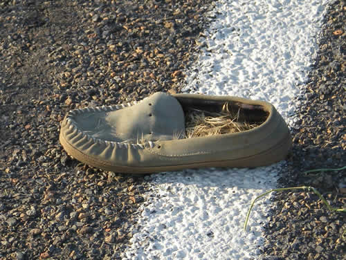 a. How did this shoe get in the road? Didn't someone miss it?  b. Why is it full of straw?