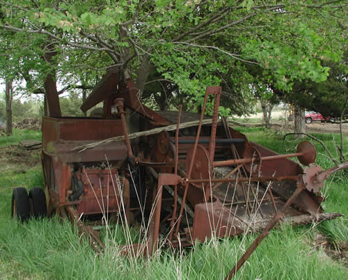 When we bought our land, we found this piece of farm equipment with the tree growing up in the middle.