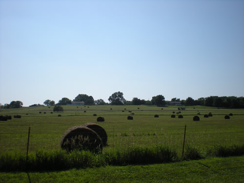 I love the look of hay bales in the field.