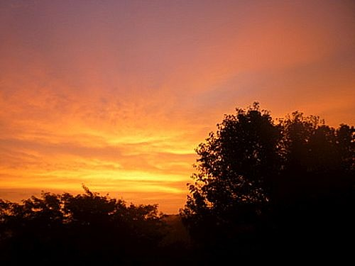A few days ago the sky turned completely orange.  the color was so intense, it woke me out of a deep sleep.