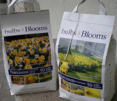 """I'm planning to plant all these narcissus bulbs this fall.  On the bag it says """"Deer won't eat.  Ne sera pas mange par les chevreuils."""" This is good because we have lots of deer.  I'm not planting tulips because I'm told they are deer lollipops."""