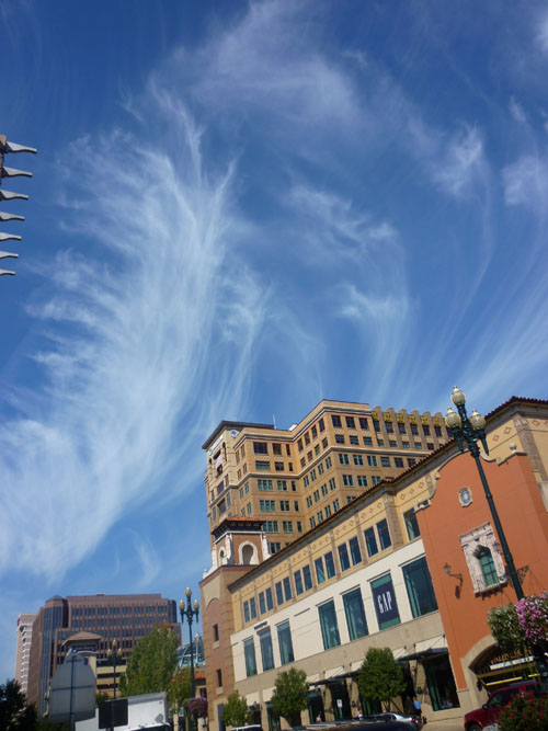 These mare's tails literally danced over the Plaza. I am inspired by Mollyavalon to capture more sky photos. Her recent shots have been just simply artistic.