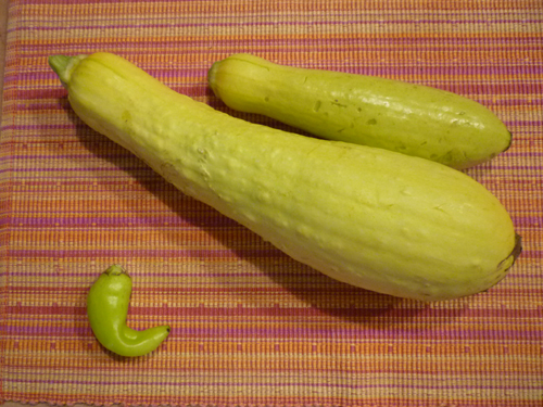 Yellow squash and a yellow pepper from our neighbors, the Haines' garden.