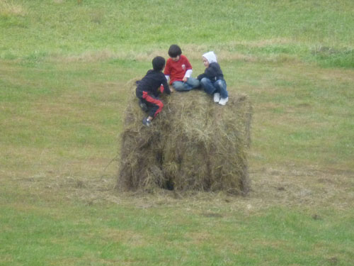 I had no idea how much fun the children would make from the bale of hay we left in our pasture. We have intentions of painting a targt on it for archery practice.