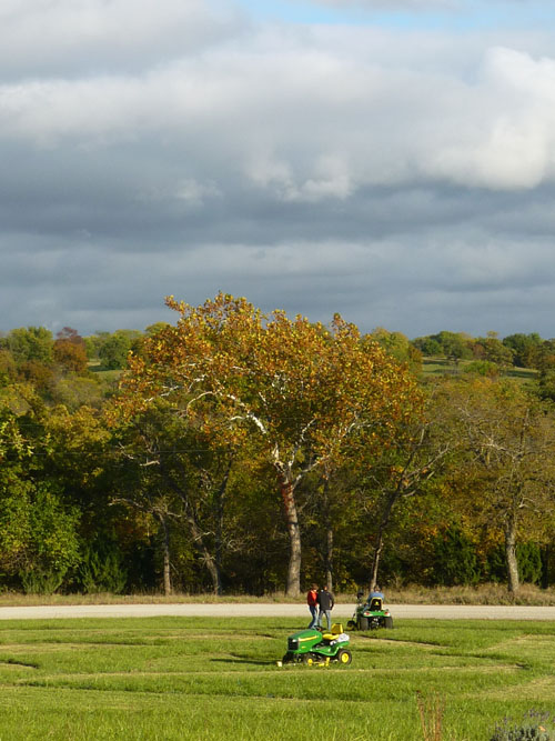 The sun came out this evening just for a little while. That is Stan Herd, the crop artist, and his film crew out by the Sycamore tree.  Stan is creating an abstract earthwork.  It is for a John Deere ad.  I will post more photos of the work in progress.