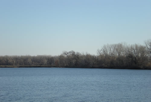 Lakeview lake, blue sky, bare trees