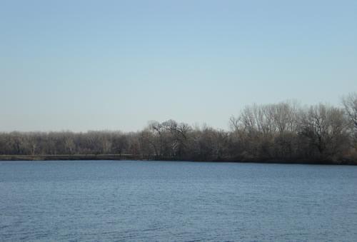 Lakeview lake, blue sky, bare trees