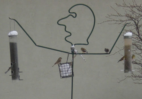 Birds at human-shaped birdfeeder