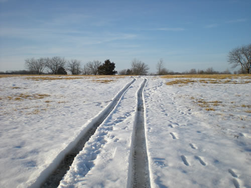 snowy field with car tracks