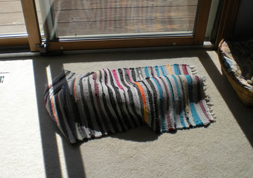 bunched up throw rug in the sun