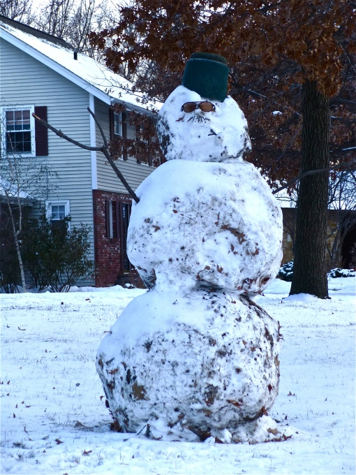 What an admirable feat!  With just the little bit of snow on the ground this snowman is to be praised.  Good job people.