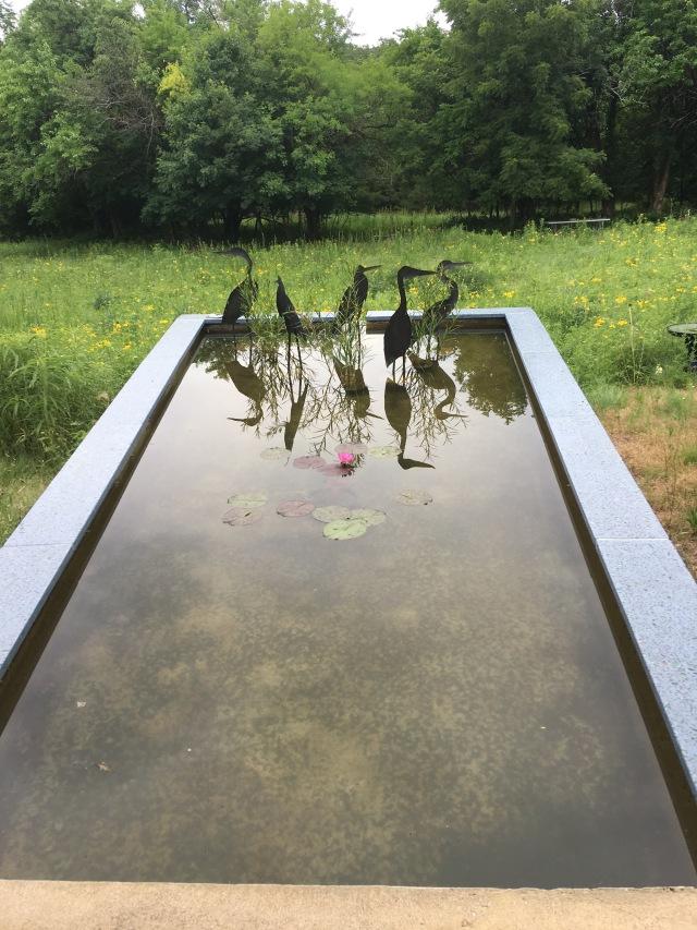 Jill's pool