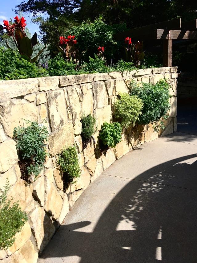 Herbal wall